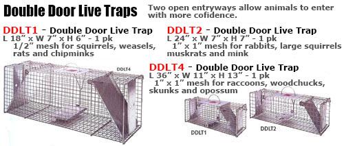 Double Door Trap